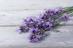 Bouquet of purple lavenders against wooden background photo