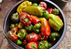 Bucket of peppers photo