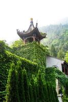 traditionele Chinese pagode