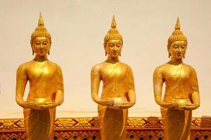 Golen buddhas buddhist culture and life style temple statues Asi