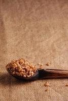 Cooked buckwheat photo
