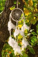 white dreamcatcher against autumn tree