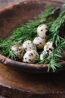 Fresh quail egg in bowl photo