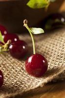 Healthy Organic Sour Cherries photo