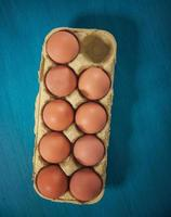Fresh eggs photo
