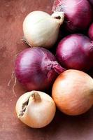 Red and yellow onions photo