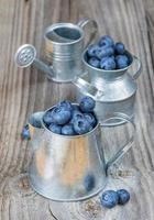 Blueberries in a metal tableware photo