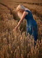 mujer en campo de trigo foto