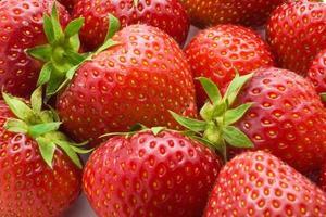 fresas foto