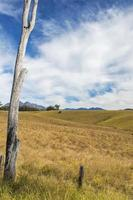 Outback mountain and field at the Scenic Rim, Queensland.