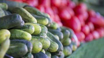 Cucumbers photo