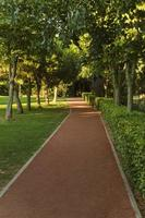 exercise track lane in the park photo