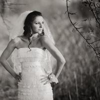 Young caucasian bride in  gorgeous wedding dress.