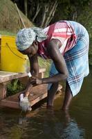 Suriname, preparing food.