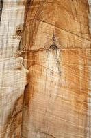 wood grain texture photo