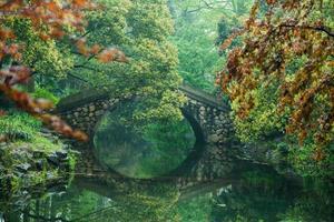 Asian Classic bridge