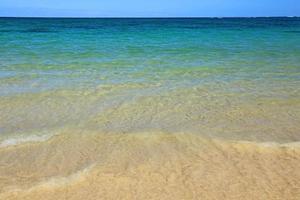 águas rasas
