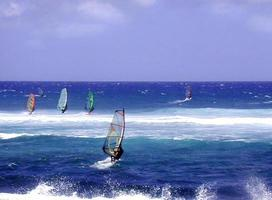 windsurfistas, maui foto