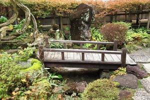 traditionele Aziatische tuin