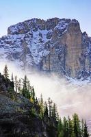 Low clouds above pine trees, Lake O'Hara, Yoho National Park