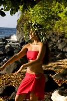 Hawaiin danser