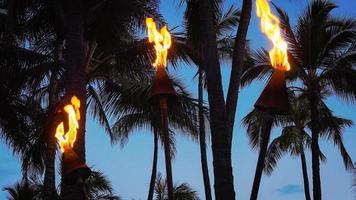 antorchas tiki ardiendo en la playa de waikiki en la noche
