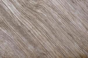 texturas de madera foto