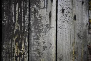 old, grunge wood panels photo