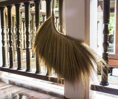 asian broom photo
