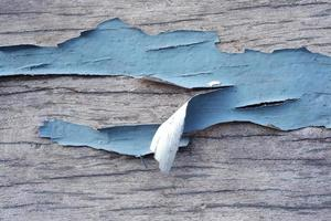 peeling painted wooden background photo