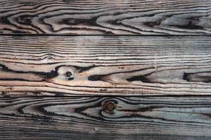 old wood texture. background old panels photo