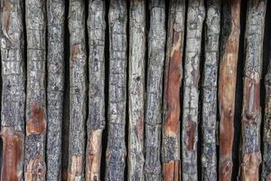 Log texture wall background photo