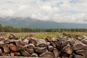 Feuerholz kombiniert durch einen Stapel gegen Berge.
