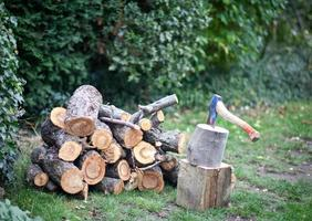 Log pile and axe photo
