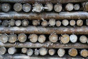 Holzstapel photo