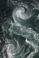 turbulence de l'eau de saltstraumen