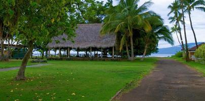Palm trees and large hut on Hawaii.