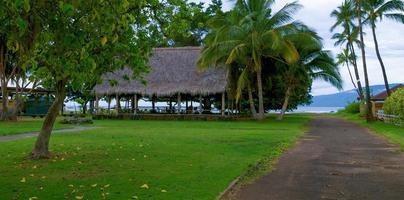palmeras y cabaña grande en hawaii. foto