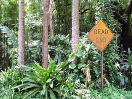 Dead End photo