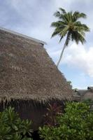 Traditional Polynesian houses in Aitutaki Lagoon Cook Islands