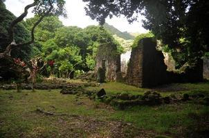 ruínas de pedra antigas na floresta tropical do Havaí, kaniakapupu