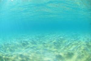 Makena Reef photo