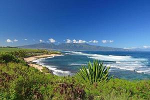 Playa de mandíbulas, Maui