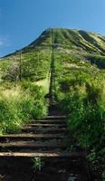 Koko Head hiking trail photo