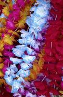 Flower lei background