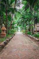 jardín tropical y el camino a la playa del mar foto