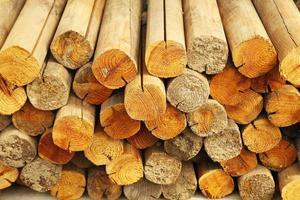 firewood photo