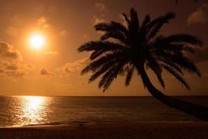 sunset beach, o'ahu, havaí