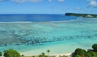 Tropical Paradise photo