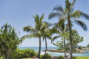 escena de playa tropical
